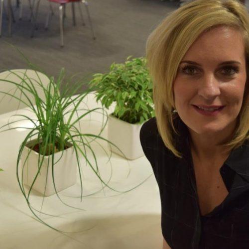 Sarah Callender, bdaily
